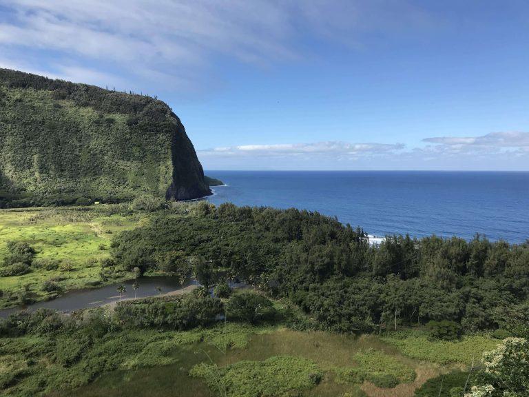 AlohaVillage 17 - Aloha Village